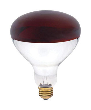 Williams Ace Hardware 250 Watt Red Heat Lamp