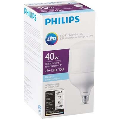25W DL LED HID REPL BULB
