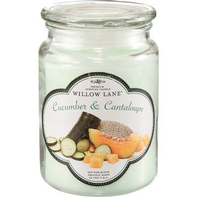 CANDLE JAR 19OZ WILLOW CUC/CANTL