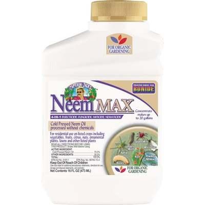 NEEM OIL CONC PT