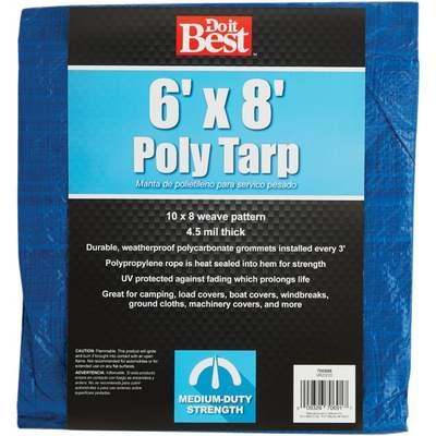 TARP - BLUE / 6 X 8