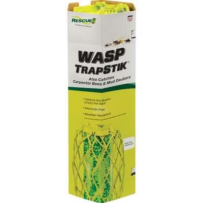 TRAPSTIK FOR WASPS