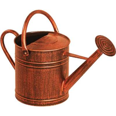 2GAL COPPER WATERING CAN