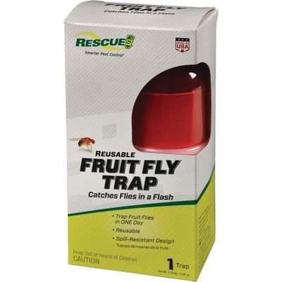 FRUIT FLY TRAP FFTR-BB4