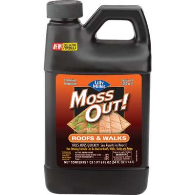 54OZ CONCENTRATE MOSS OUT