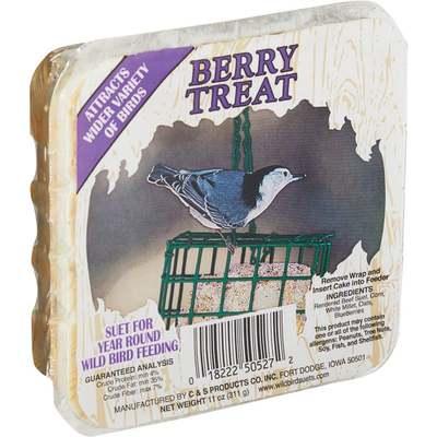 11OZ BERRY TREAT SUET