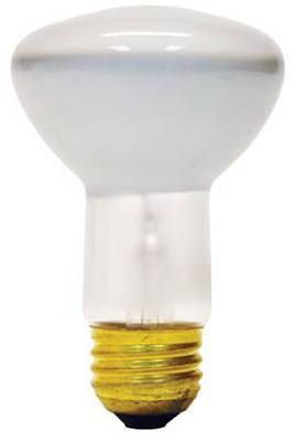 Ge 45W R20 Refl Bulb