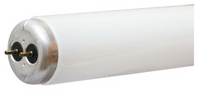 """Wp 48"""" 34W Cw Fluo Tube"""