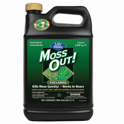 1 GAL MOSS OUT FOR LAWNS