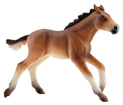 BRN/Tan Mustang Foal