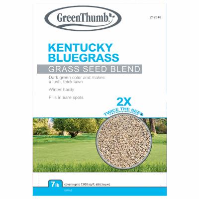 GT 7LB Kentucky Bluegrass Seed