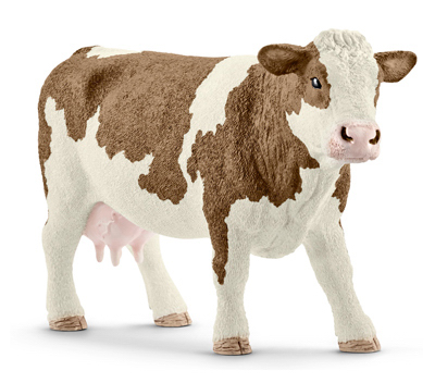 BRN/WHT Simmental Cow
