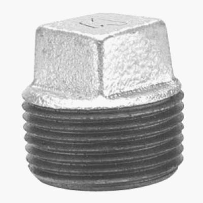 1/8 Galvanized Plug