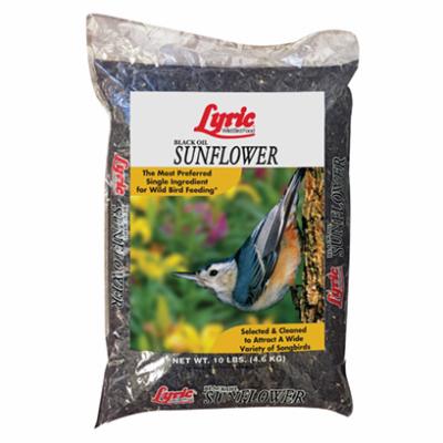 10LB BLK Oil Sun Seed 2647421
