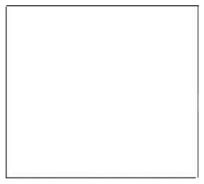 """18""""x9' Adhesive White Liner"""