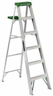 Aluminum Type II Ladder, 6'