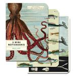 MINI NOTEBOOKS 3pk SEA LIFE