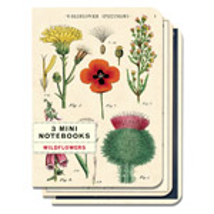 MINI NOTEBOOKS 3pk WILDFLOWERS