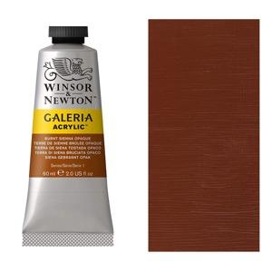 Galeria Acrylic Color 60ml Burnt Sienna Opaque
