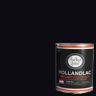 BLACK 0029 HOLLANDLAC BRIL .75L