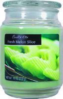 Candle-Lite 3297170 Jar Candle, Fern Green