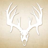White Deer Skulll Decal