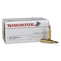 Winchester Varmint and Predator .22-250 REM 45 GR JHP 40 Rounds