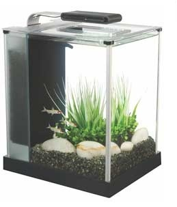FLUVAL SPEC 2.6 GALLON AQUARIUM SET