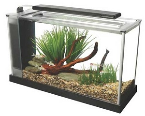 FLUVAL SPEC 5 GALLON AQUARIUM SET