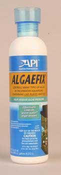 ALGAE FIX FOR AQUARIUMS   8  OZ