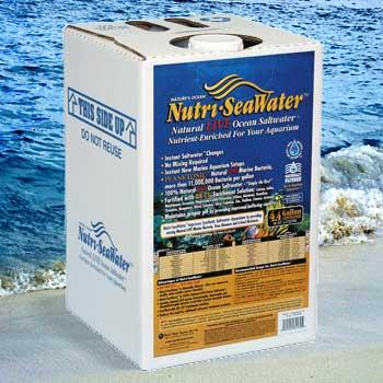 NUTRI SEAWATER NATURAL LIVE OCEAN SEAWATER 4.4 GAL