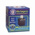 San Francisco Bay Shrimpery Kit
