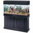 Aqueon 48in x 13 in Pine Aquarium Stand - Black