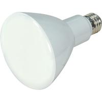 LAMP LED 10BR30(65W)/50K/D