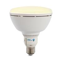 LAMP LED 18W (100W) BR40 WW E26