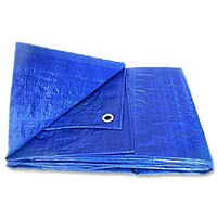 18' X 24' BLUE PLASTIC TARP