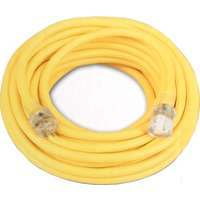 Coleman Cable 02587 12/3 Vinyl Outdoor Extension Cord with Lighted End, 25-Feet