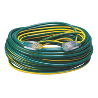 EXT CORD 12/3 SJT X 100'GRN/YELW
