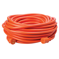 EXTENSION CORD 12/3 ST X 100'