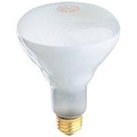 LAMP 65W 65BR30/FL-130 REFLECT F