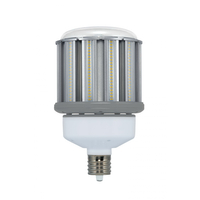 LAMP LED 80W(320W)/HID/50K/EX39