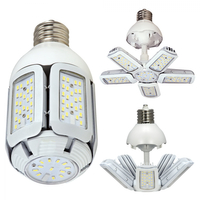 LAMP LED 60W(250W)/HID/MB/50K