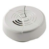 SMOKE DETECTOR BATTERY FG250B